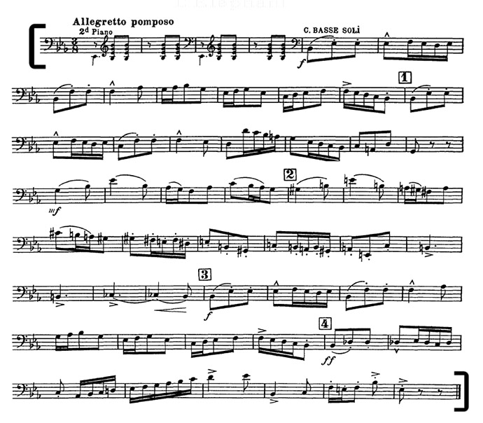 Carnival of the Animals Bass Excerpt